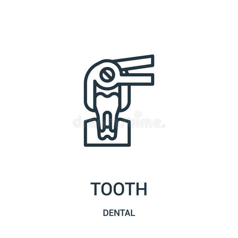 Tooth icon vector from dental collection. Thin line tooth outline icon vector illustration. Linear symbol. For use on web and mobile apps, logo, print media stock illustration