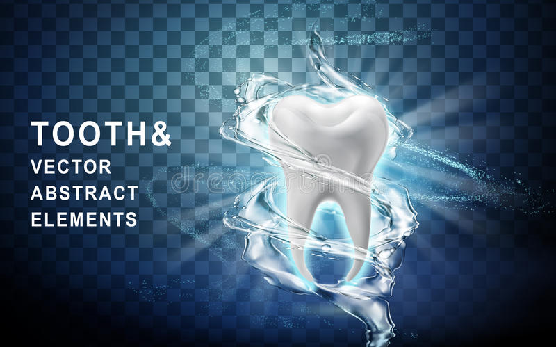 Tooth model washed. Tooth model perfectly washed by surrounding water flow, 3d illustration stock illustration