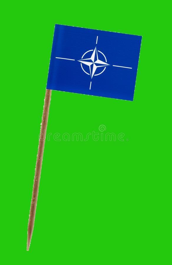 Nato flag ,with green screen for chromakey. Tooth pick wit a small paper flag of Nato on a green screen for chromakey royalty free stock image
