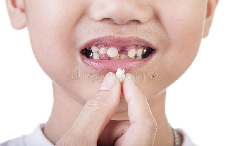 tooth stock photos