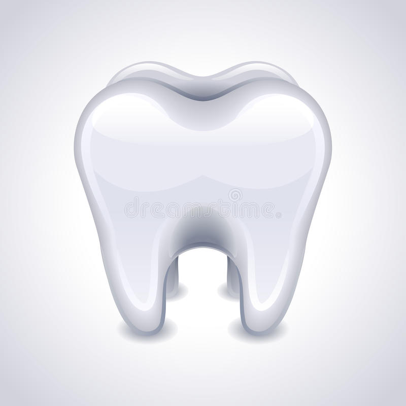 Tooth Stock Vector