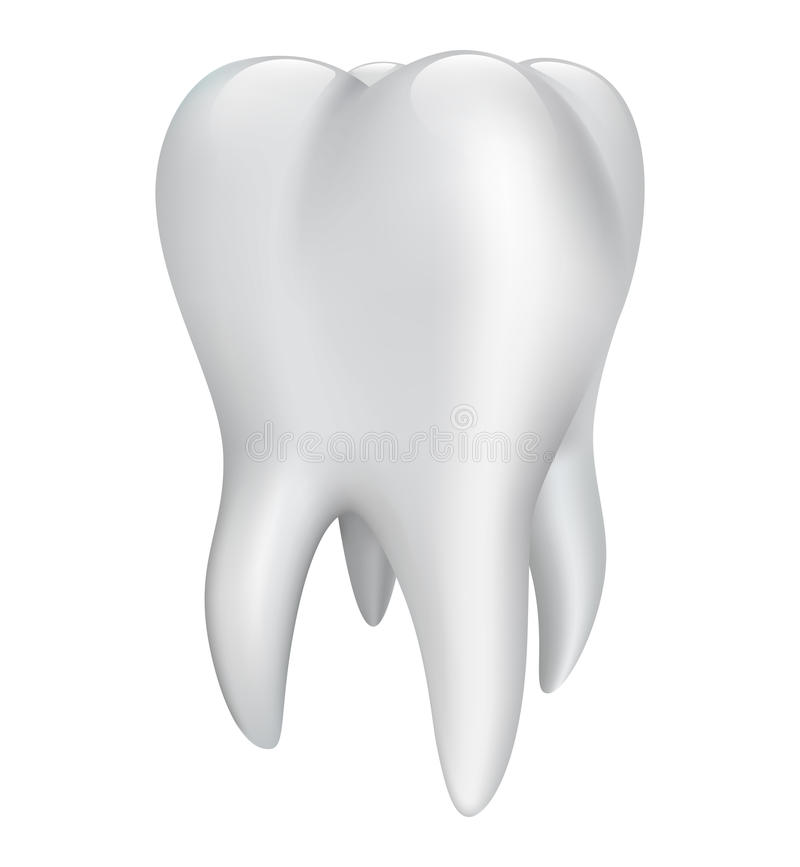 Tooth on a white background. Vector illustration vector illustration