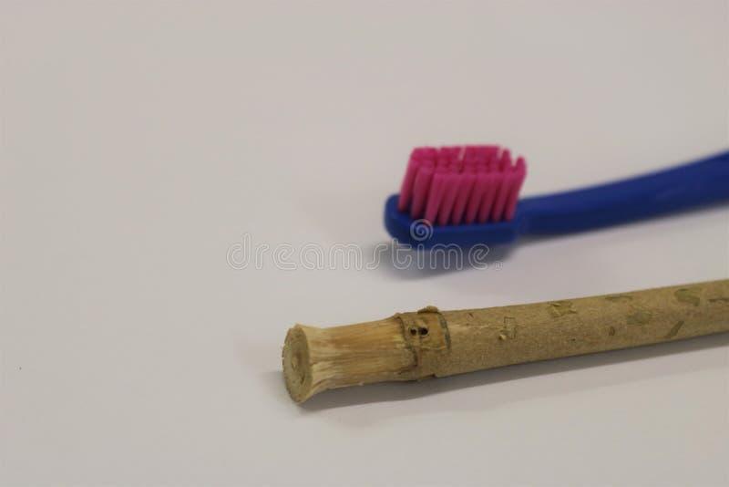 toothbrush Ручка Miswak Ручка Siwak Органическая зубная щетка стоковое изображение