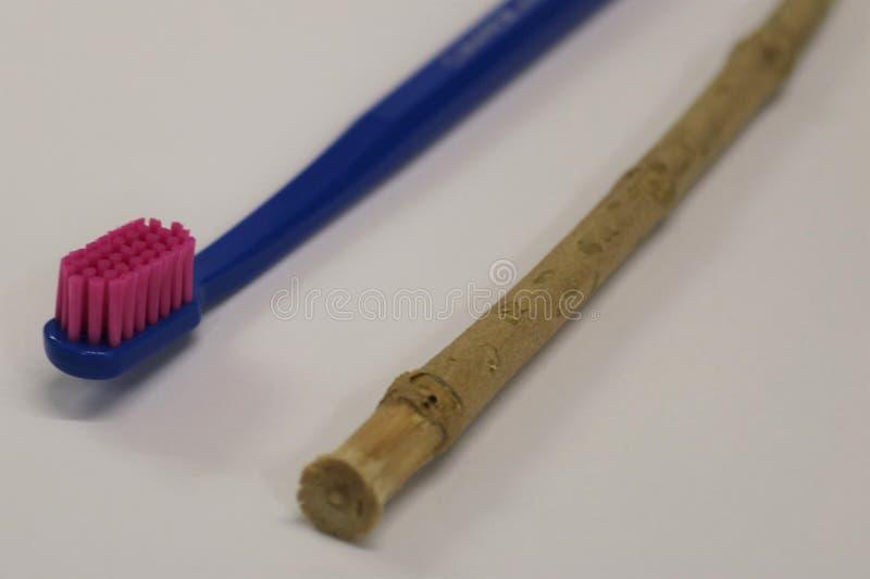 toothbrush Ручка Miswak Ручка Siwak Органическая зубная щетка стоковые фотографии rf