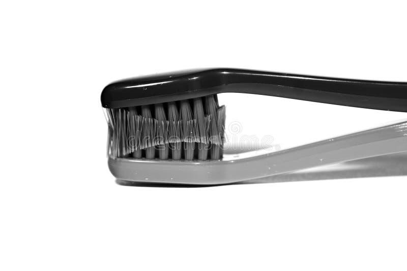 toothbrush стоковые изображения rf