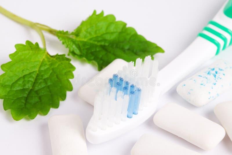Toothbrush com goma de mastigação e sprig da hortelã foto de stock royalty free