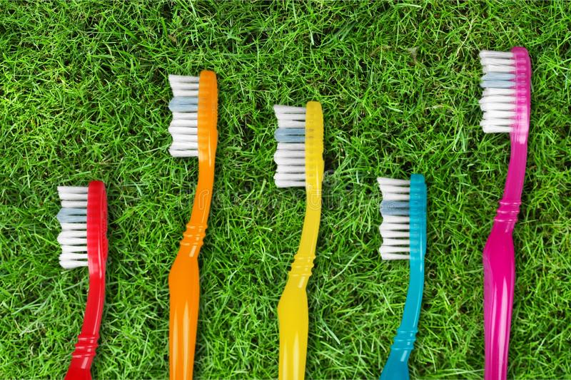 toothbrushes стоковые фото