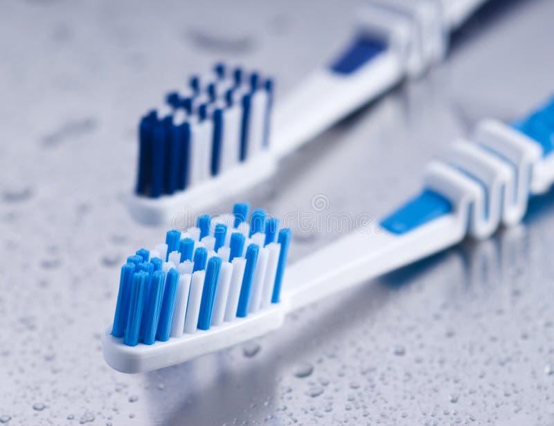 Toothbrushes immagine stock libera da diritti