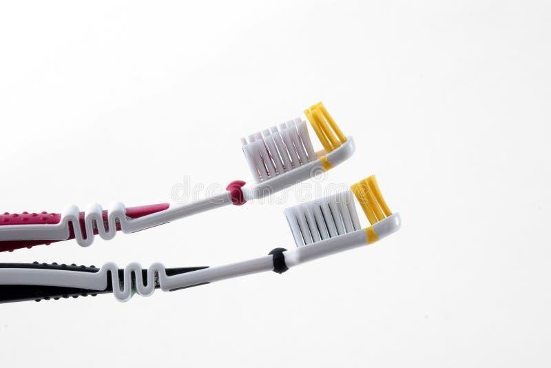 Toothbrushes nel profilo fotografia stock libera da diritti