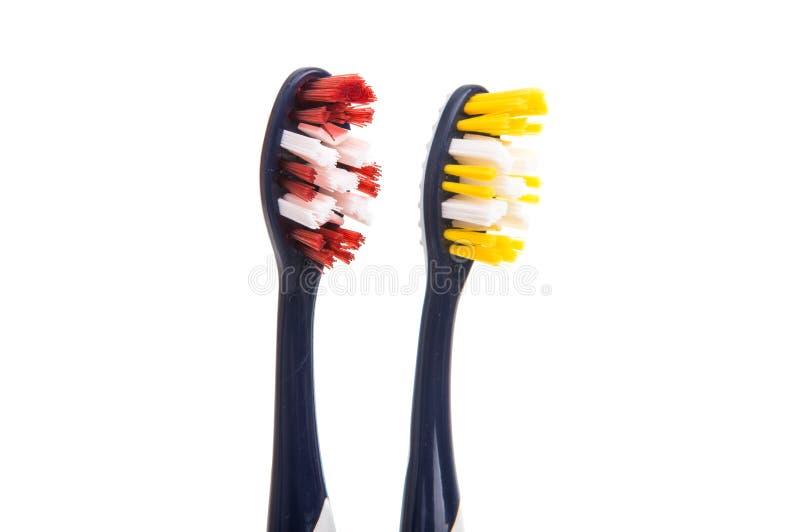 Toothbrushes odizolowywający zdjęcie royalty free