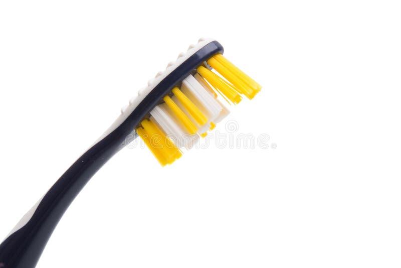 Toothbrushes odizolowywający obrazy royalty free