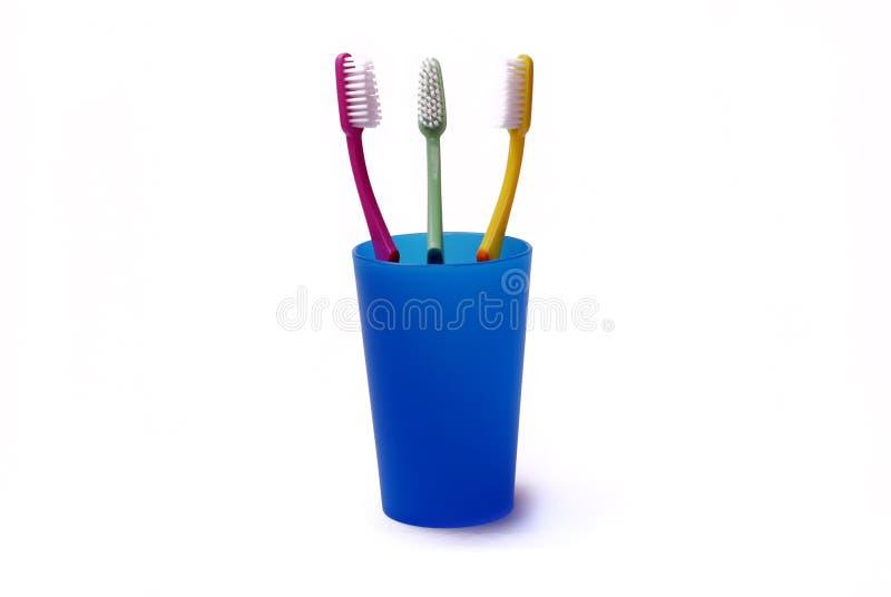 Toothbrushes in un supporto di colore immagine stock libera da diritti