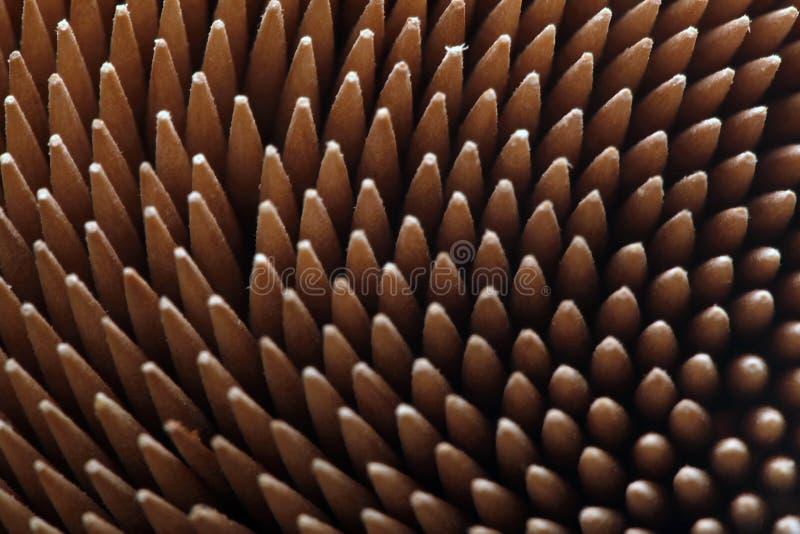 Toothpicks στοκ φωτογραφίες