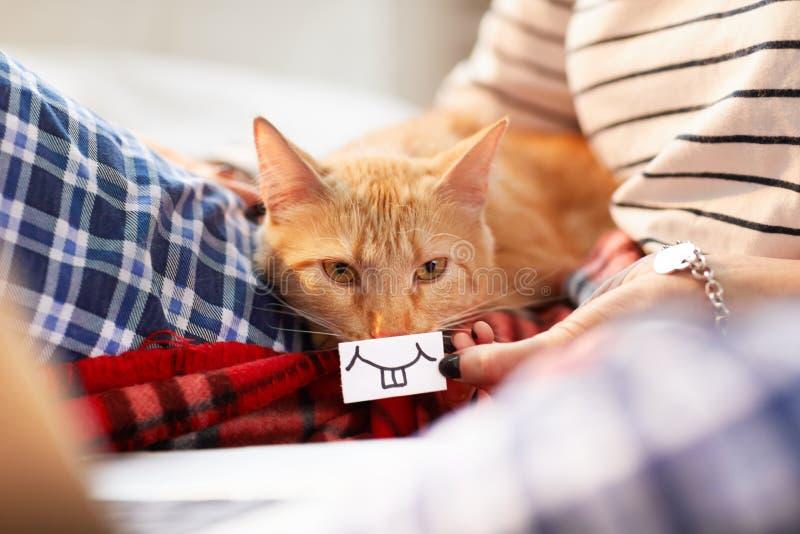 Toothy leende för Ginger Cat arkivbilder