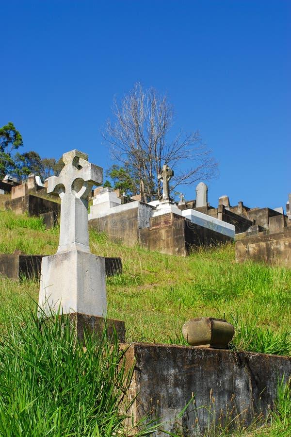 Toowong公墓 图库摄影
