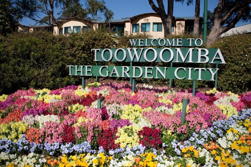 Toowoomba as flores da cidade de jardim imagem de stock