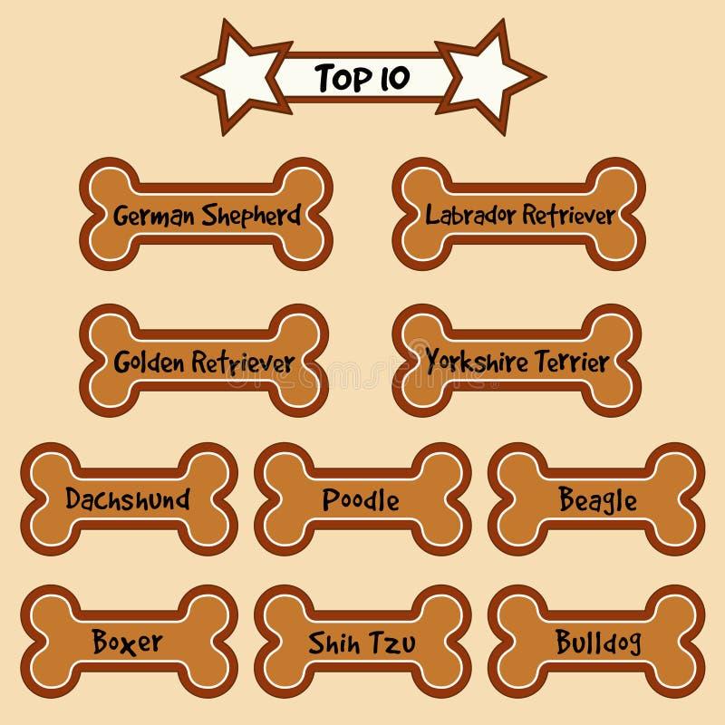 Download Top 10 Most Popular Dog Breeds Stock Vector - Illustration of gingerbread, homemade: 21588778