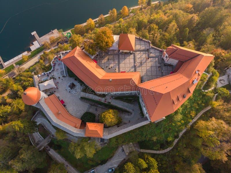 Top abajo de la vista del castillo medieval en el lago Bled en Eslovenia en otoño imagen de archivo