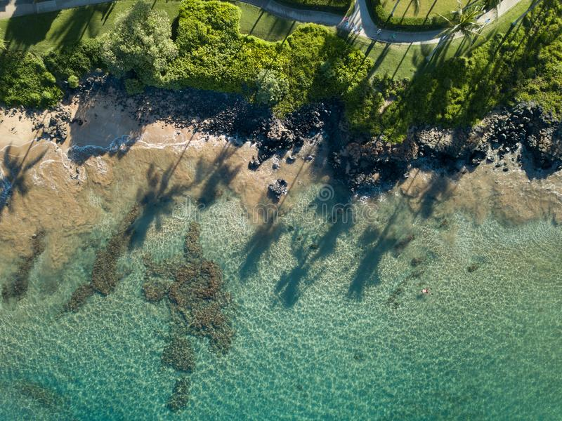 Top abajo de la vista el costa costa de Maui con las sombras largas de la palmera foto de archivo libre de regalías