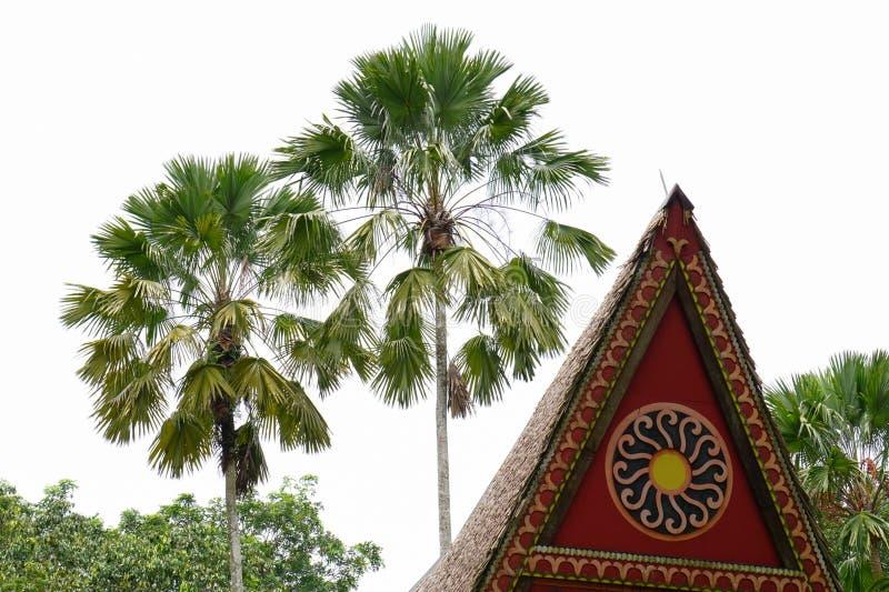 Top de la casa tradicional en Vietnam meridional foto de archivo