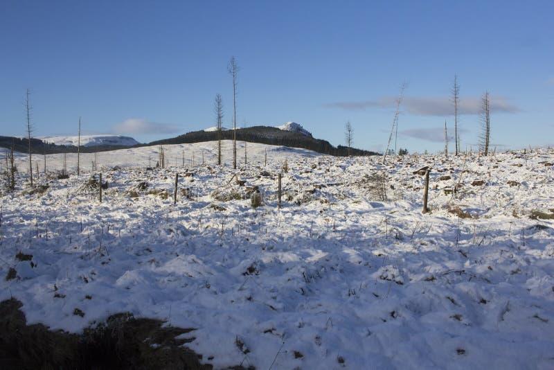 Top de la colina cubierto en nieve imagenes de archivo
