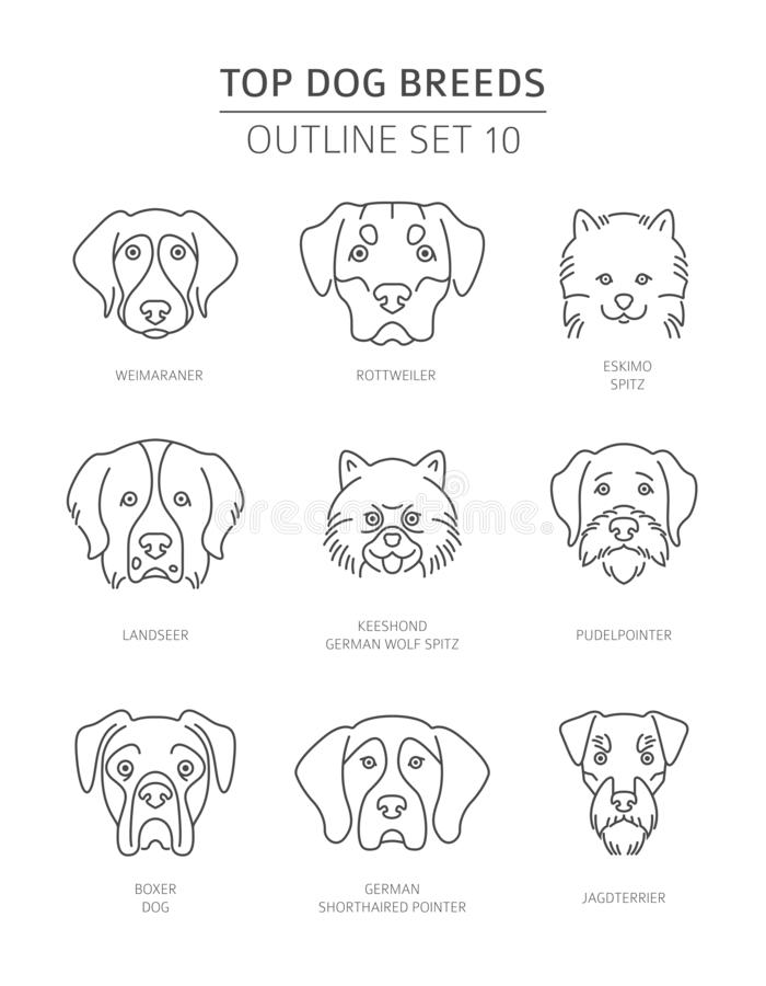Free Top Dog Breeds. Pet Outline Collection Stock Photos - 130046883