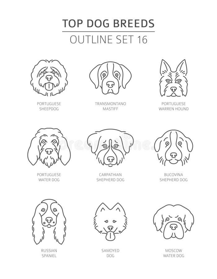 Free Top Dog Breeds. Pet Outline Collection Royalty Free Stock Photo - 130046885