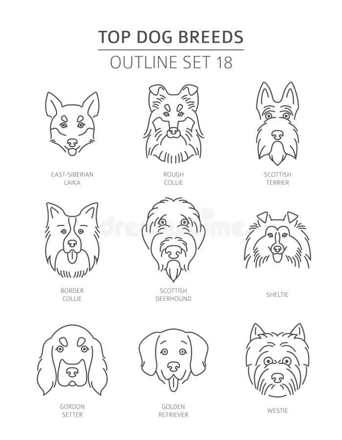 Free Top Dog Breeds. Pet Outline Collection Royalty Free Stock Photography - 130046897
