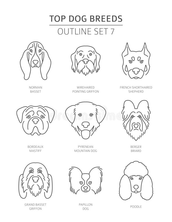 Free Top Dog Breeds. Pet Outline Collection Stock Image - 130046931