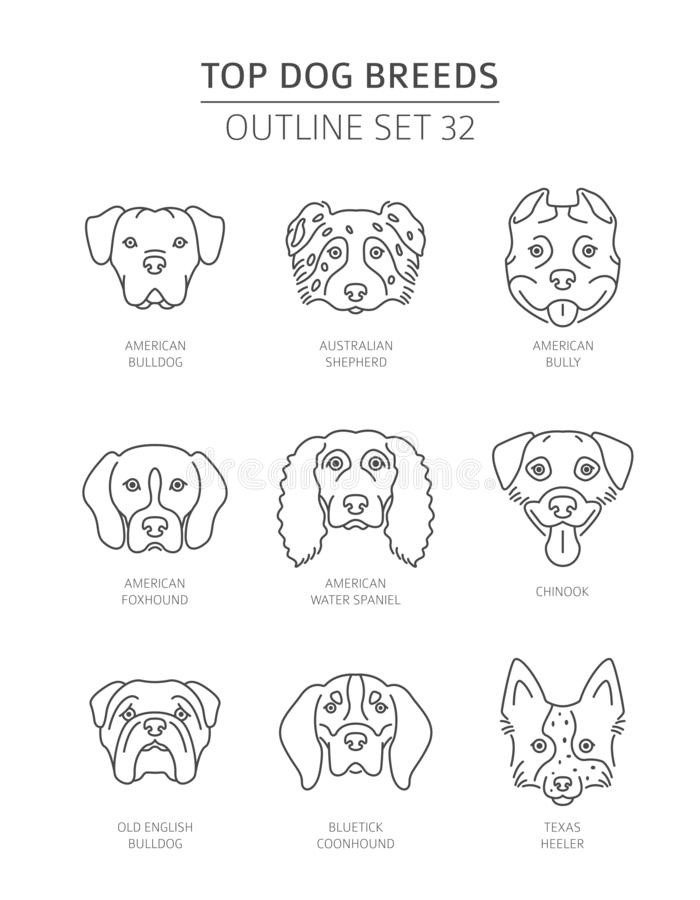 Top dog breeds. Pet outline collection royalty free illustration