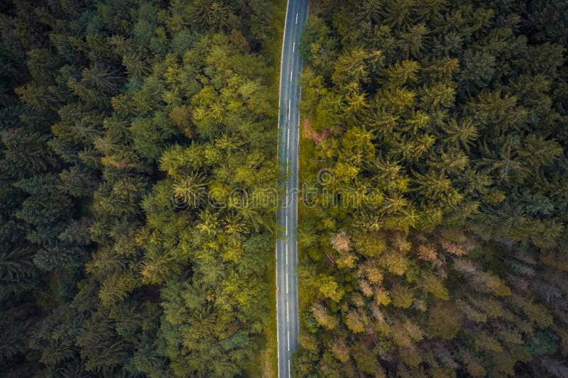 Amazing aerial shot of the trees along the Snake Pass in Peak District National Park, shot in summer of 2019 royalty free stock photos