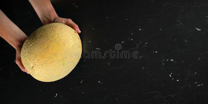 Top down view, woman hands holding cantaloupe melon over black marble like board. Wide banner with space for text on royalty free stock photo
