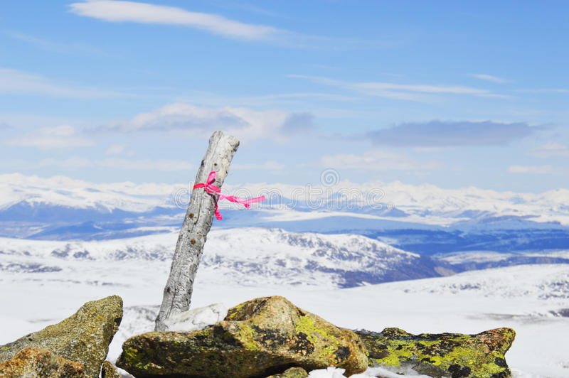 On the top of the mountain. royalty free stock image