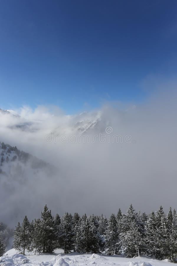 The top of the mountains with forest covered with snow, fog and clouds on a sunny frosty day. The top of the mountains with forest covered with snow royalty free stock images