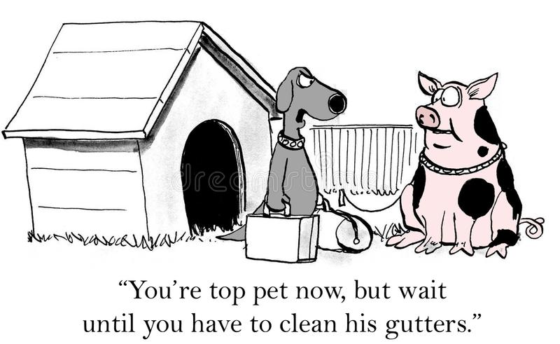Top pet. You're top pet now, but wait until you have to clean his gutters royalty free illustration