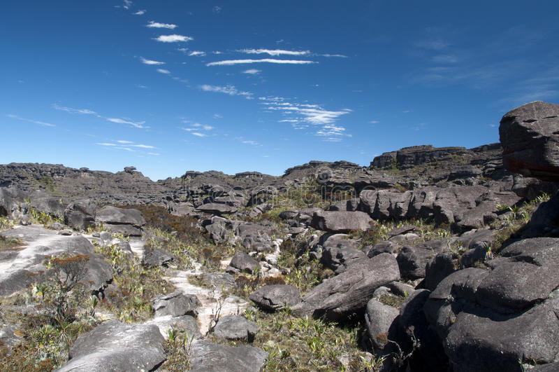 On the top of Roraima plateau stock image