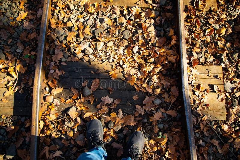 Top shot of feet on railway on fall with dry leaves during sunset stock photo