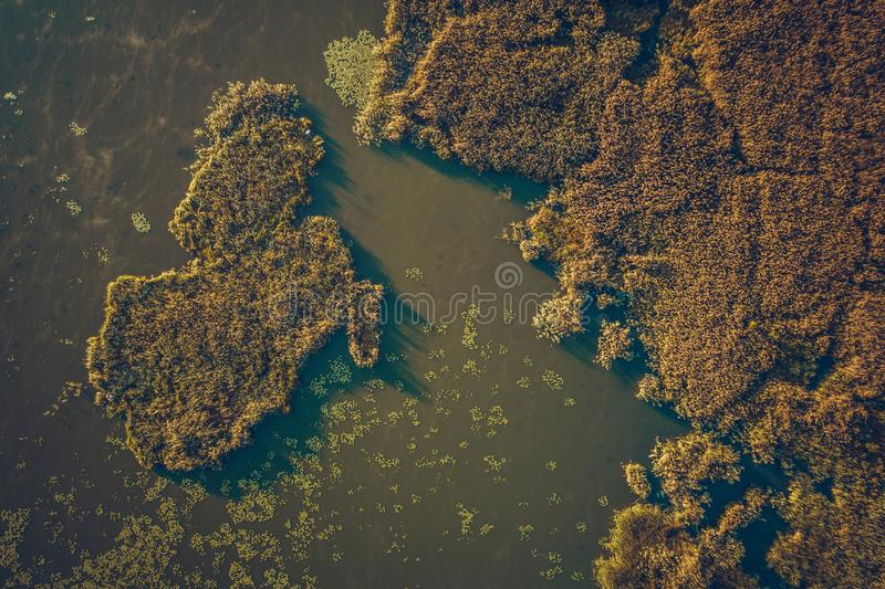 Top view of aerial lake stock photos
