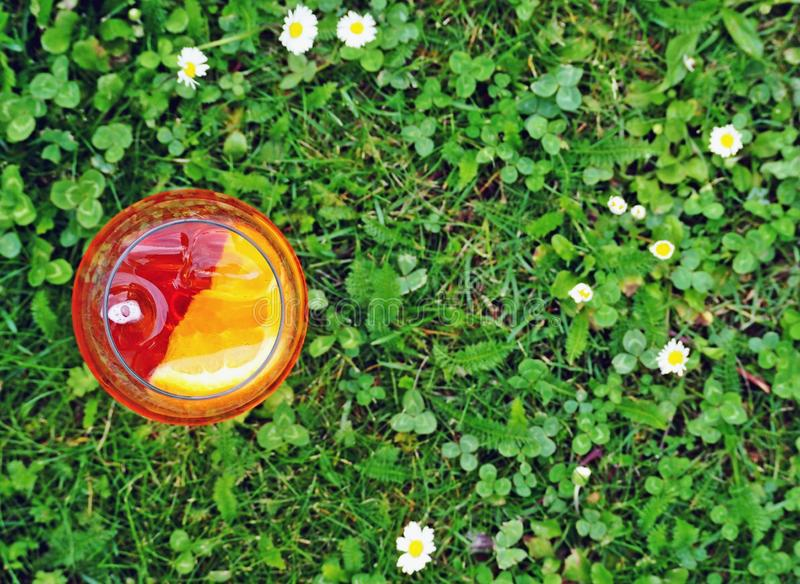 Top view of an aperol spritz glass on grass background with some daisies royalty free stock photos