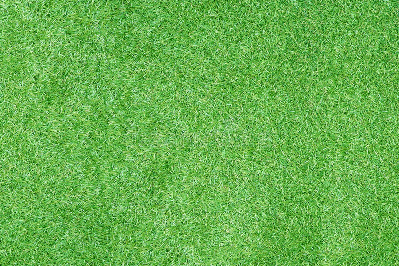 Carpet Floors Slideshare Top View Of Artificial Green