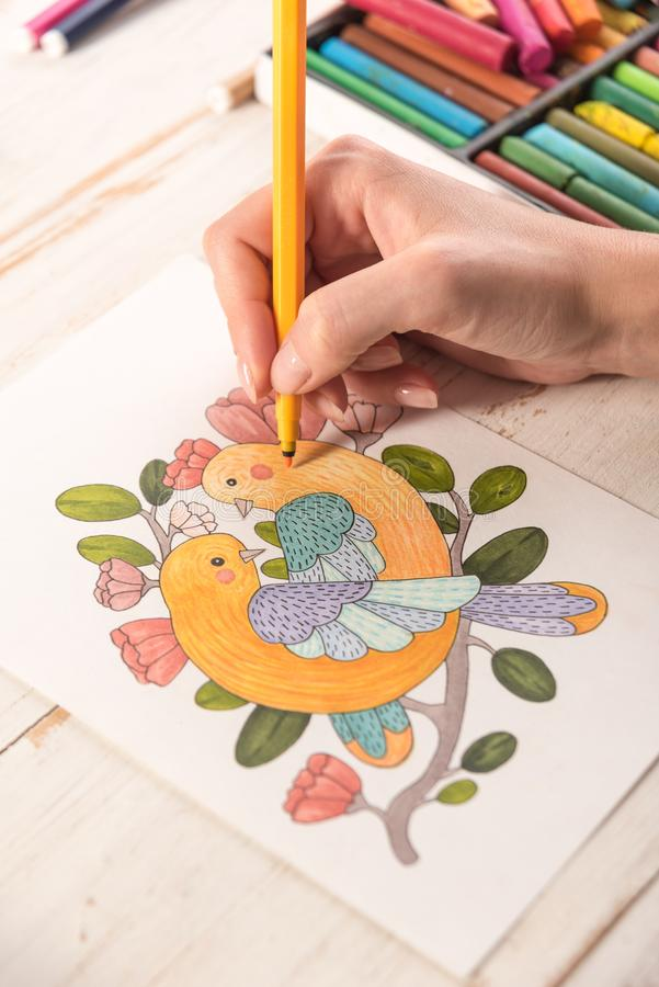 Top view of picture drawn with markers on paper. Top view of artist painting beautiful design picture of birds with markers on paper stock photography