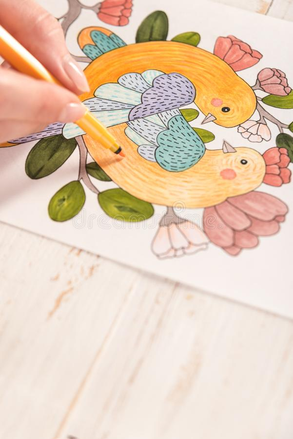 Top view of picture drawn with markers on paper. Top view of artist painting beautiful design picture of birds with markers on paper royalty free stock photo