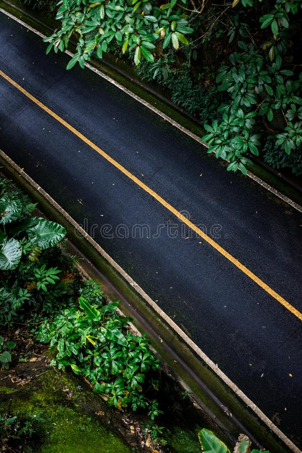 Top view of asphalt texture background. Empty road from top view. Asphalt road texture,yellow and white line on road Street Old Way Green stock image