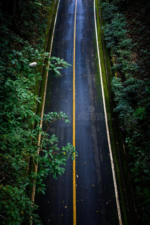 Top view of asphalt texture background. Empty road from top view. Asphalt road texture,yellow and white line on road Street Old Way Green royalty free stock images