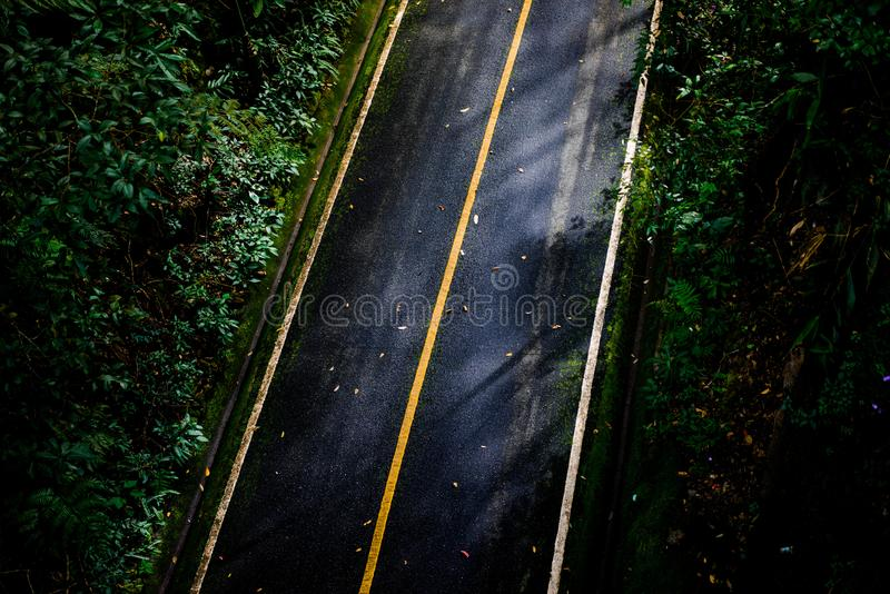 Top view of asphalt texture background. Empty road from top view. Asphalt road texture,yellow and white line on road Street Old Way Green royalty free stock image
