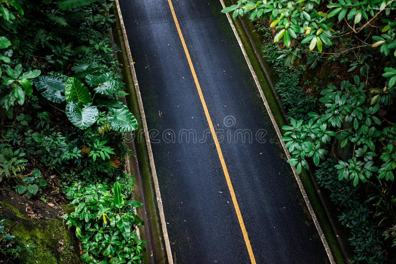Top view of asphalt texture background. Empty road from top view. Asphalt road texture,yellow and white line on road Street Old Way Green stock images