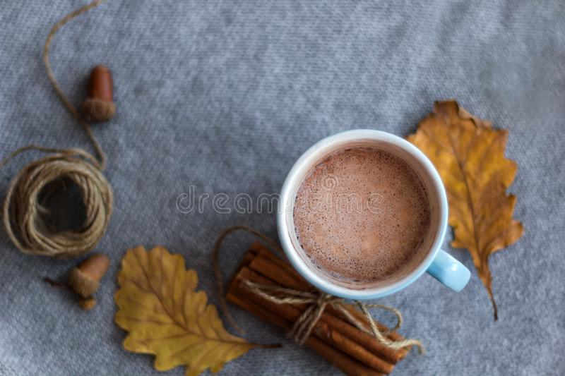 top view autumn composition cocoa cup stock images