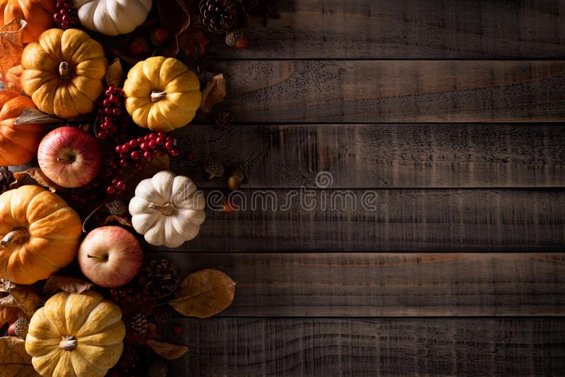 Top view of Autumn maple leaves with Pumpkin, apple, corn and red berries on old wooden background. Thanksgiving day concept.  royalty free stock photo