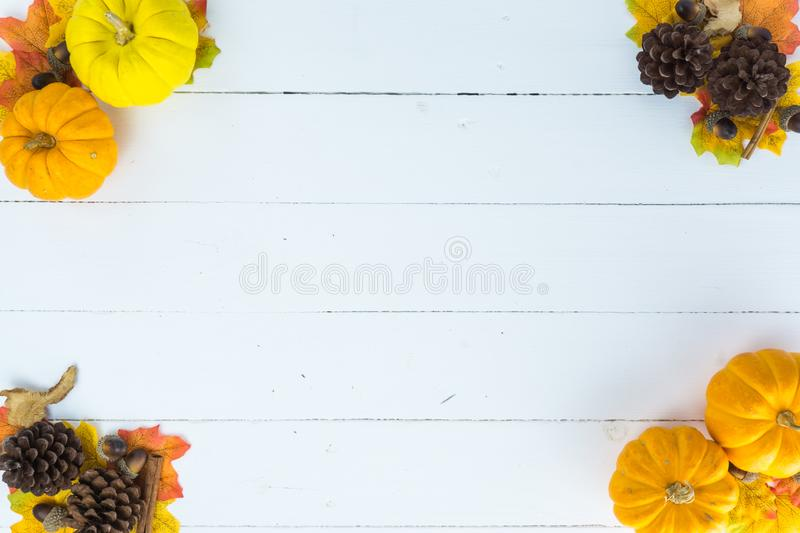 Top view of Autumn maple leaves with pumpkin and pine cone on white wooden background. Thanksgiving day concept. Halloween day royalty free stock image
