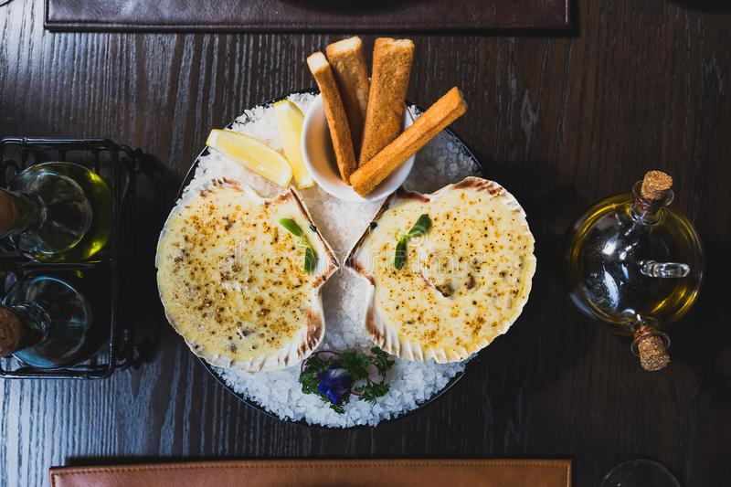 Top view of baked scallops with cheese served with sliced lemon and bread sticks on bowl with full of sea salt royalty free stock photography